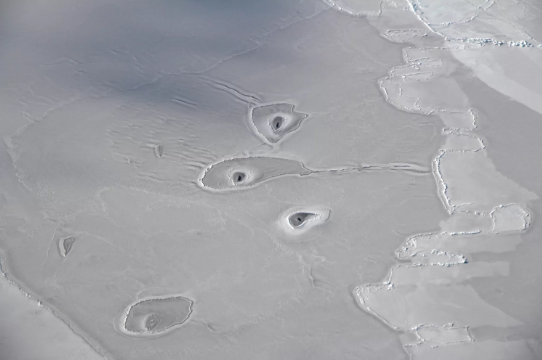 Arctic Ice - thinning and rippling