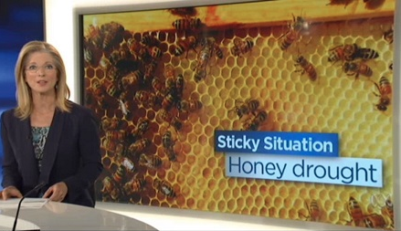 Honey Drought - Climate Change