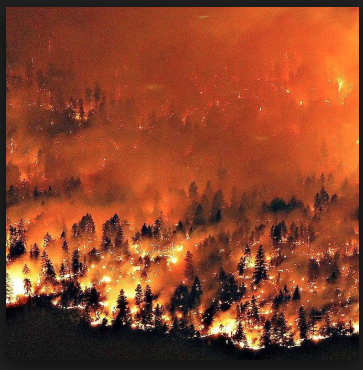 Fossil Fuel Pollution - Raging British Columbia Fires
